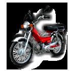 мотоциклы,  мопеды,  скутеры. Продажа,  гарантийное обслуживание